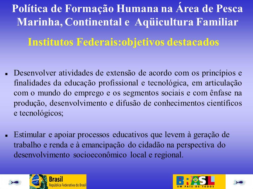 Institutos Federais:objetivos destacados