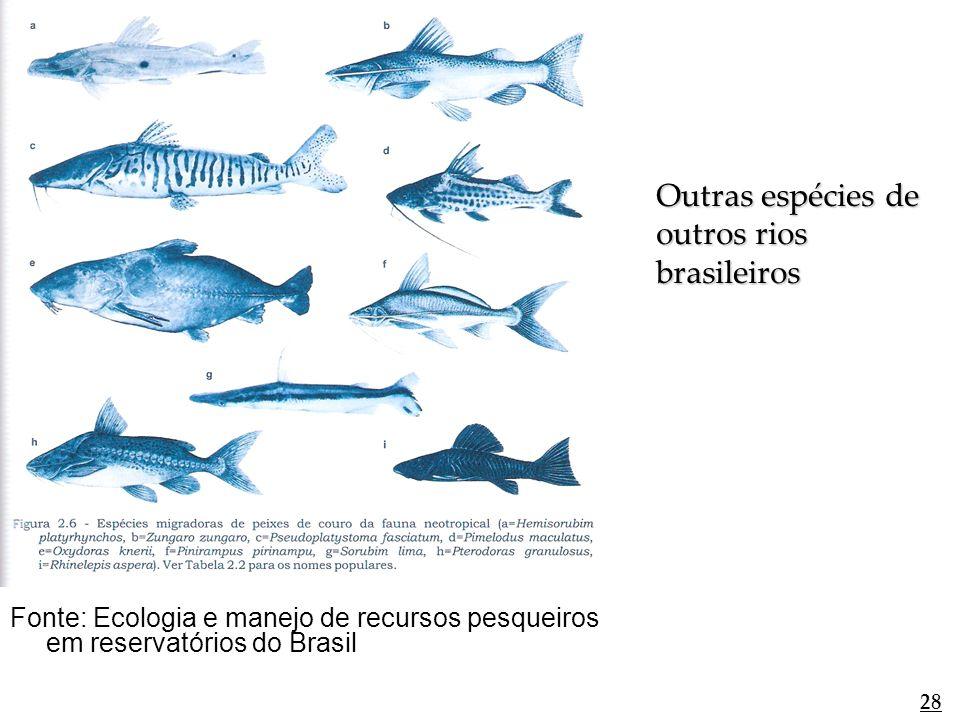 Outras espécies de outros rios brasileiros
