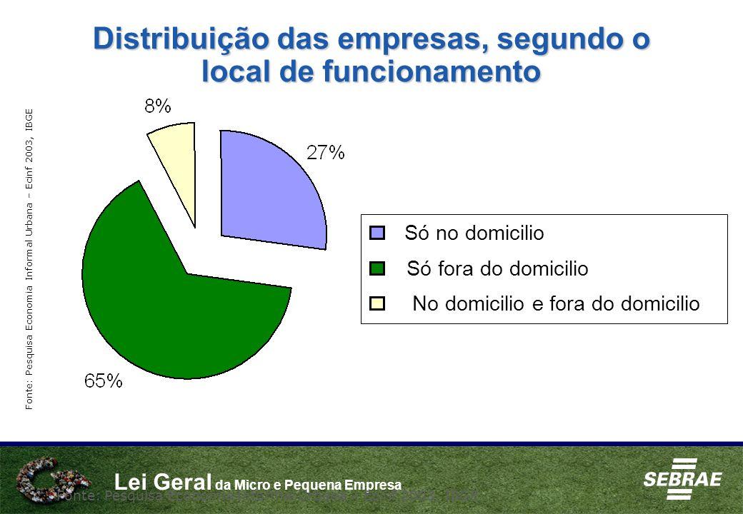 Distribuição das empresas, segundo o local de funcionamento