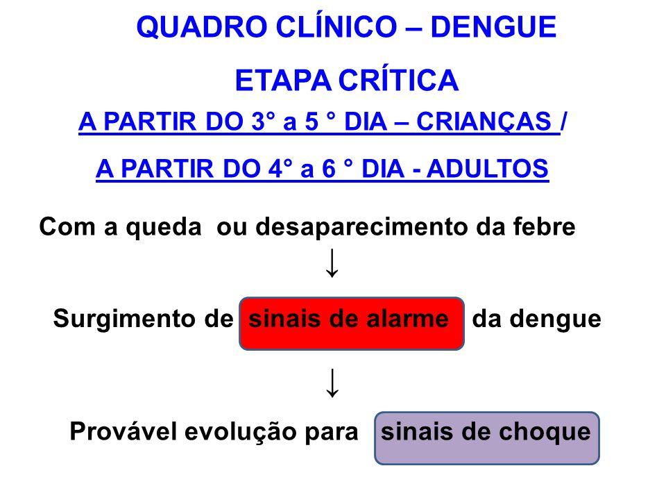 ↓ ↓ QUADRO CLÍNICO – DENGUE ETAPA CRÍTICA