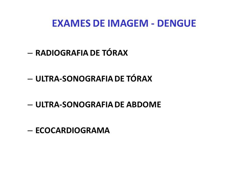 EXAMES DE IMAGEM - DENGUE