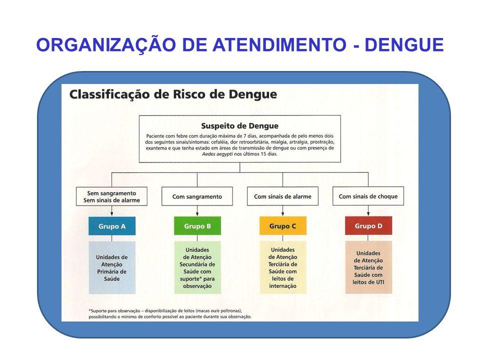 ORGANIZAÇÃO DE ATENDIMENTO - DENGUE