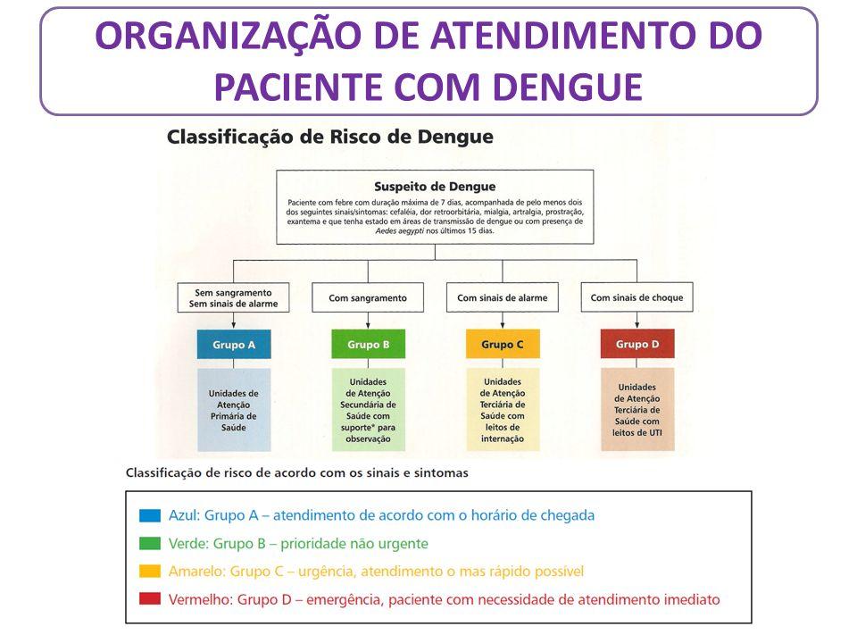 ORGANIZAÇÃO DE ATENDIMENTO DO PACIENTE COM DENGUE