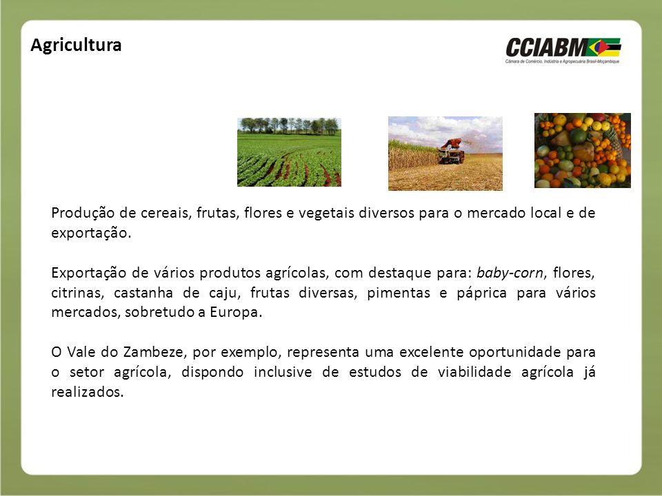 Agricultura Produção de cereais, frutas, flores e vegetais diversos para o mercado local e de exportação.