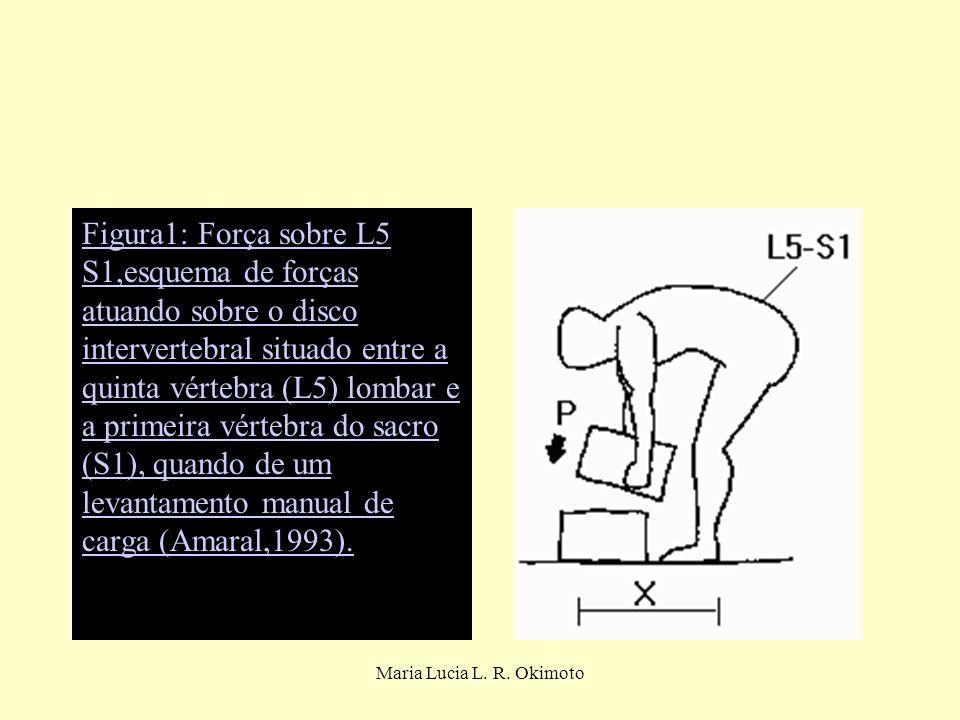 Figura1: Força sobre L5 S1,esquema de forças atuando sobre o disco intervertebral situado entre a quinta vértebra (L5) lombar e a primeira vértebra do sacro (S1), quando de um levantamento manual de carga (Amaral,1993).