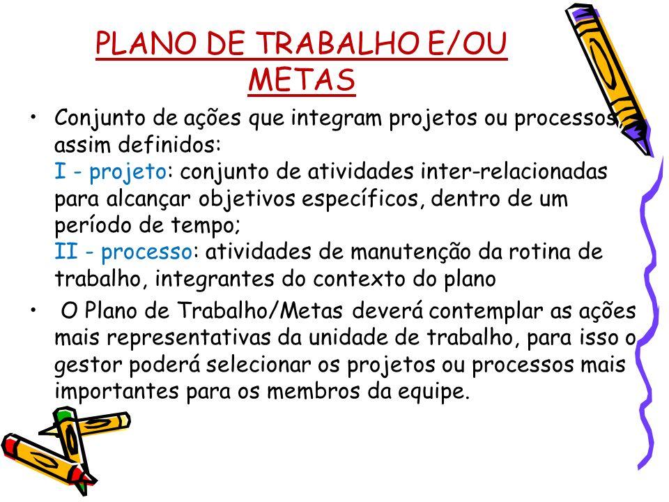 PLANO DE TRABALHO E/OU METAS