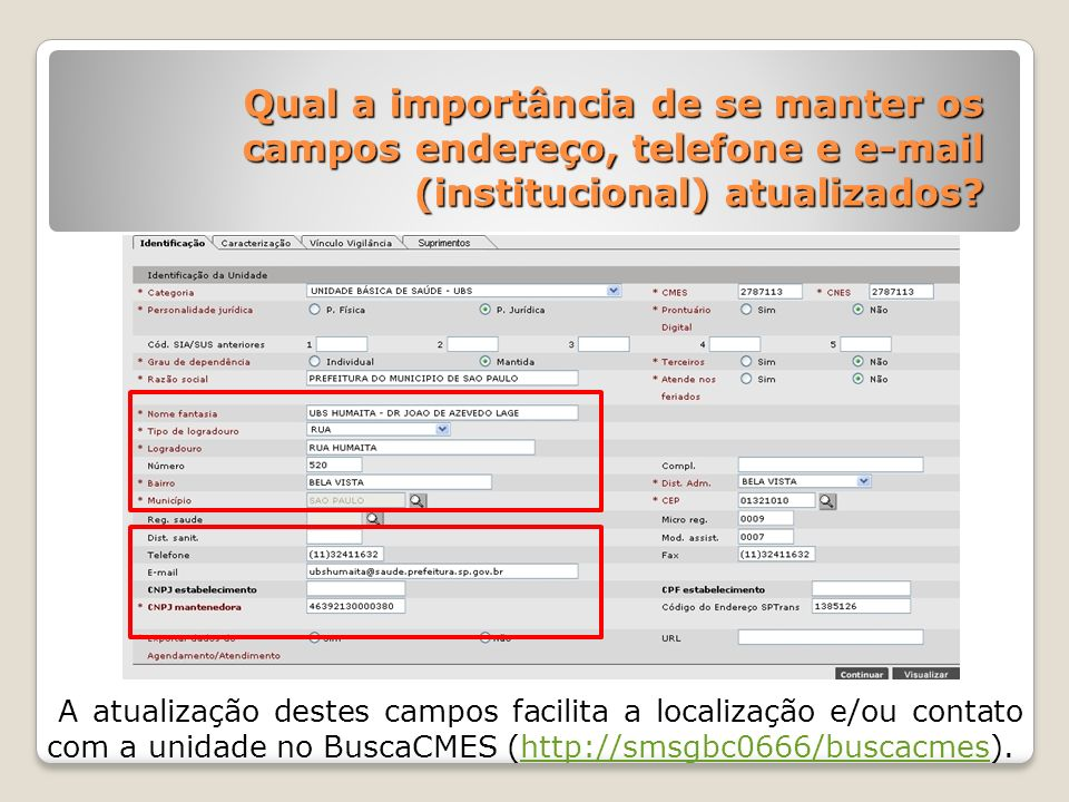 Qual a importância de se manter os campos endereço, telefone e e-mail (institucional) atualizados
