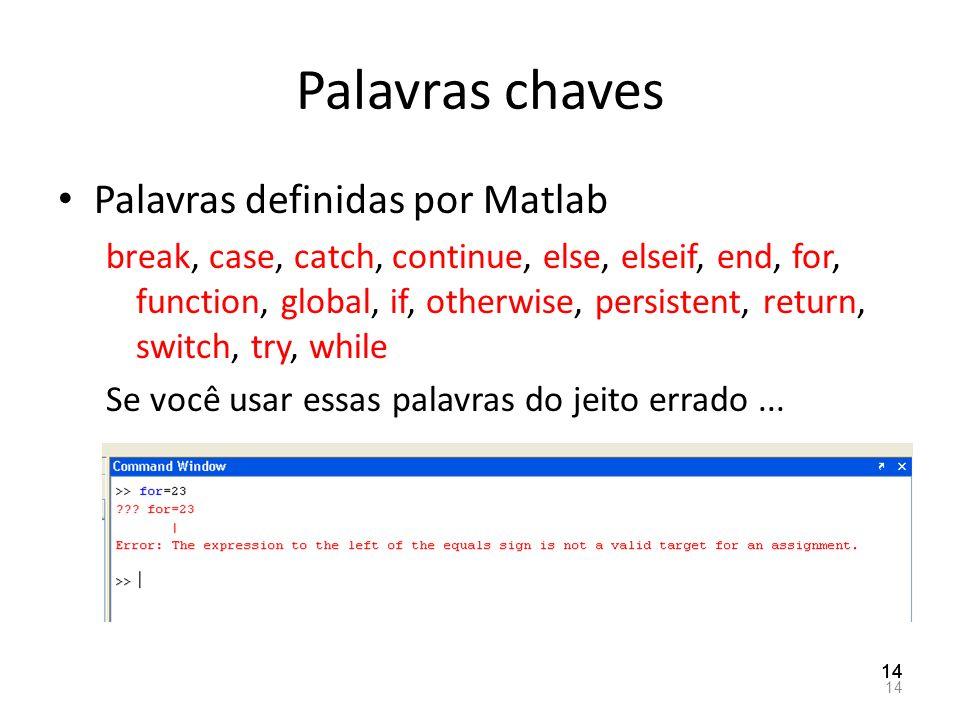 Palavras chaves Palavras definidas por Matlab