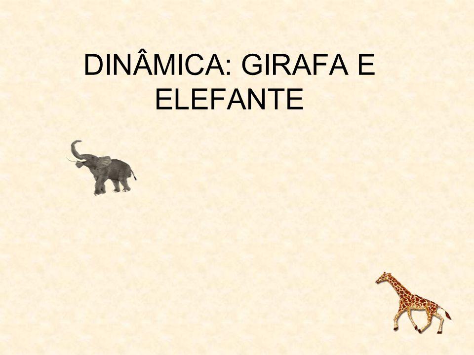 DINÂMICA: GIRAFA E ELEFANTE