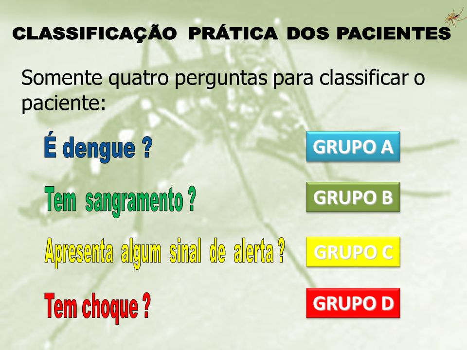 GRUPO A GRUPO B GRUPO C GRUPO D