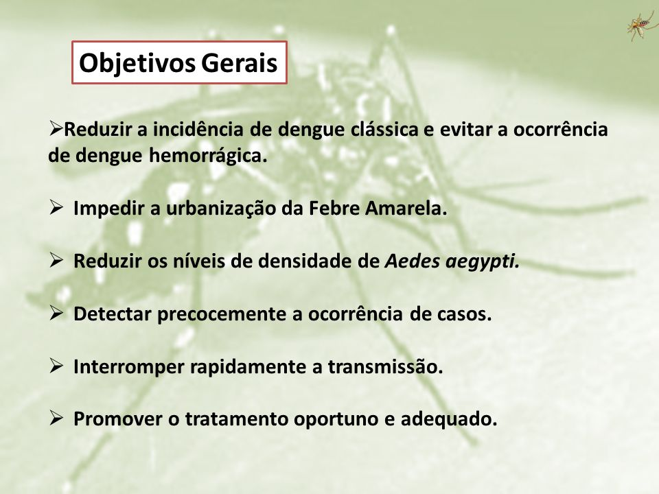 Objetivos Gerais Reduzir a incidência de dengue clássica e evitar a ocorrência de dengue hemorrágica.