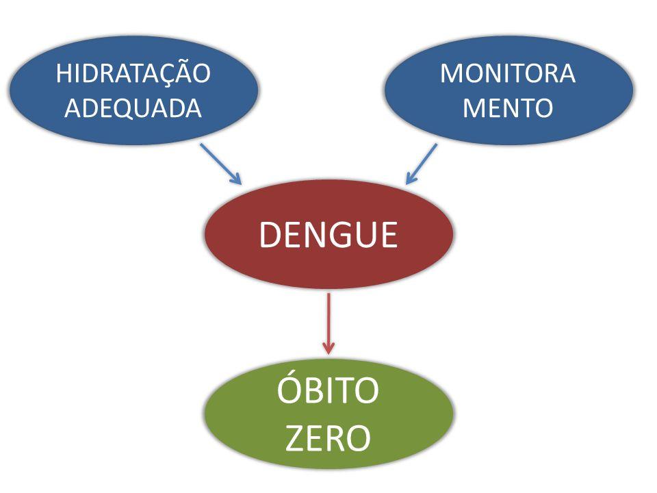 HIDRATAÇÃO ADEQUADA MONITORAMENTO DENGUE ÓBITO ZERO