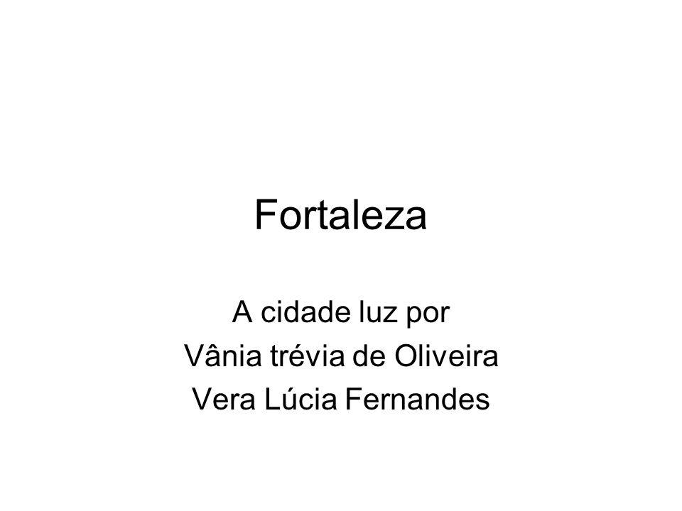 A cidade luz por Vânia trévia de Oliveira Vera Lúcia Fernandes