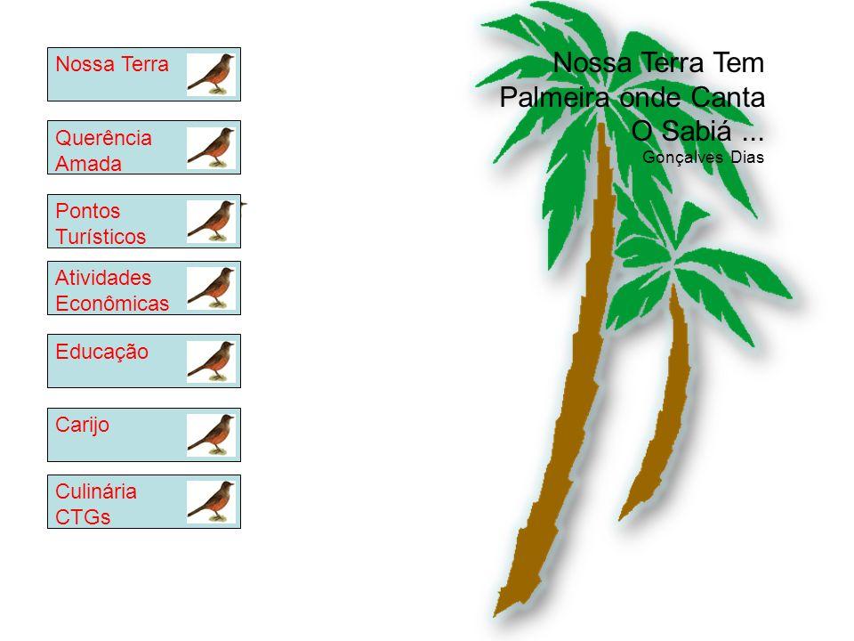Nossa Terra Tem Palmeira onde Canta O Sabiá ...