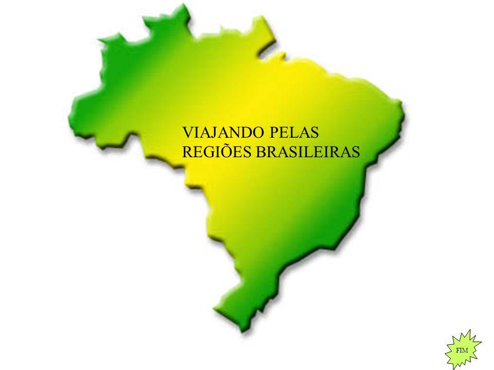 VIAJANDO PELAS REGIÕES BRASILEIRAS
