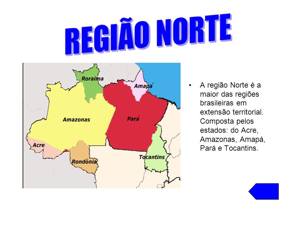 REGIÃO NORTE