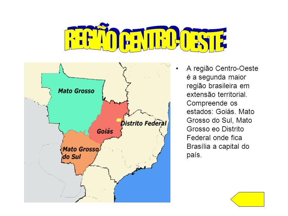REGIÃO CENTRO-OESTE