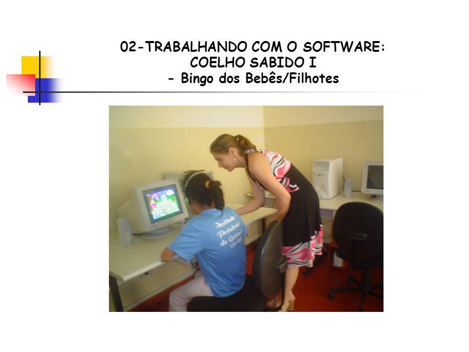 02-TRABALHANDO COM O SOFTWARE: COELHO SABIDO I - Bingo dos Bebês/Filhotes