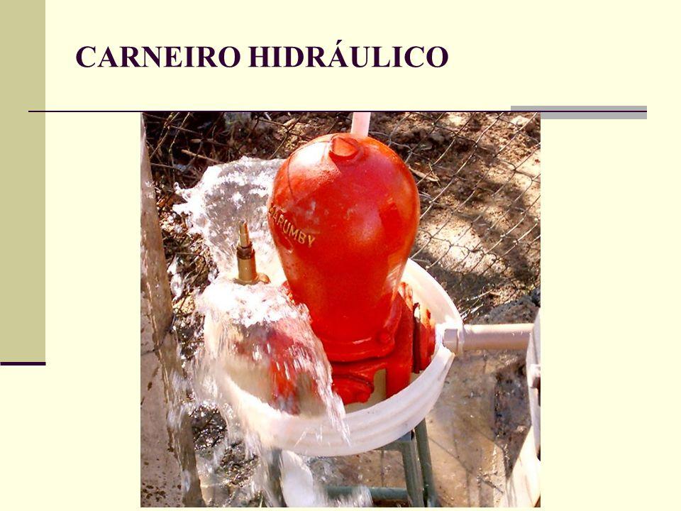 CARNEIRO HIDRÁULICO