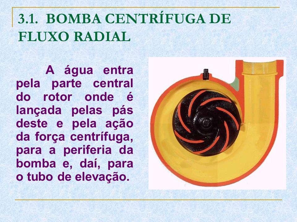3.1. BOMBA CENTRÍFUGA DE FLUXO RADIAL
