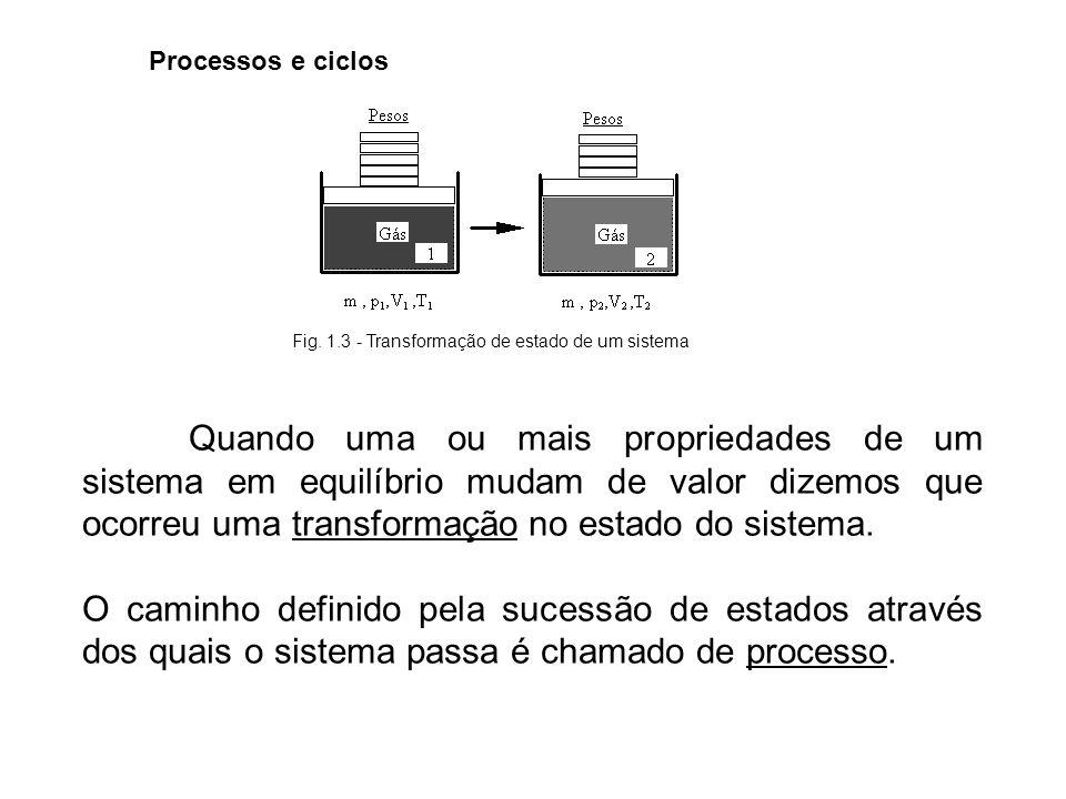 Fig. 1.3 - Transformação de estado de um sistema