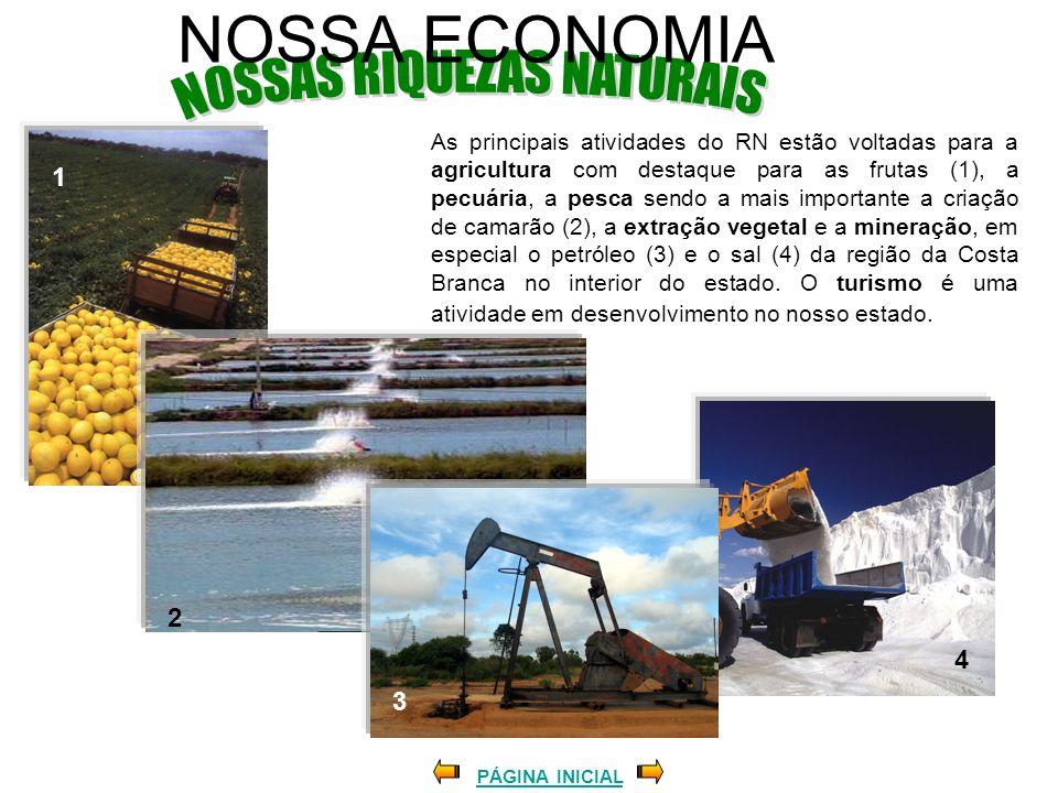 NOSSAS RIQUEZAS NATURAIS