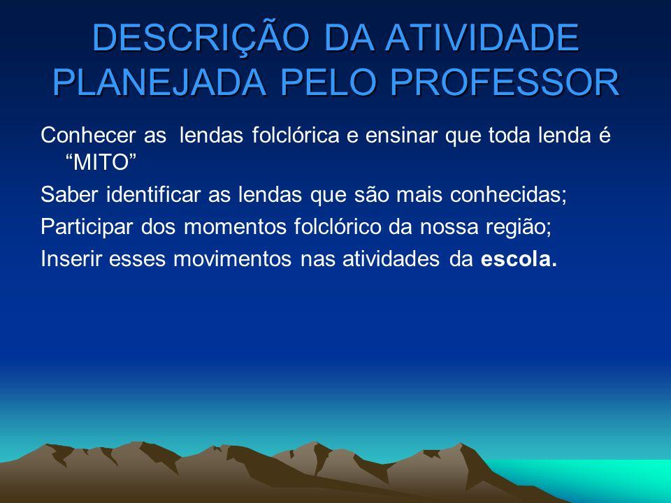 DESCRIÇÃO DA ATIVIDADE PLANEJADA PELO PROFESSOR