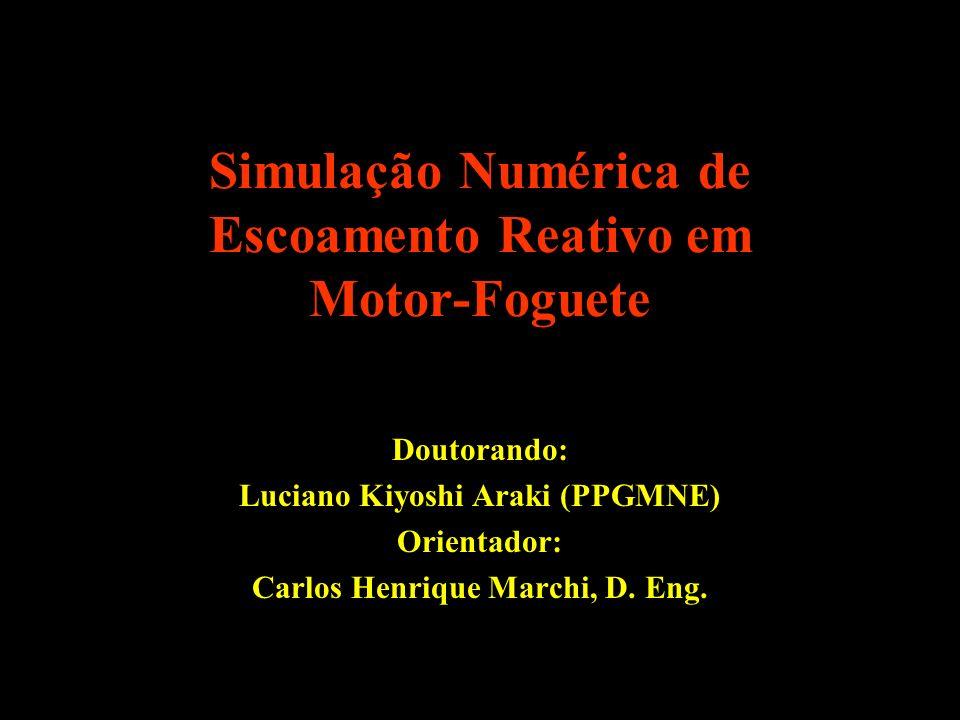 Simulação Numérica de Escoamento Reativo em Motor-Foguete