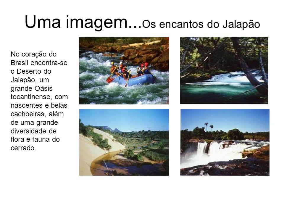 Uma imagem...Os encantos do Jalapão