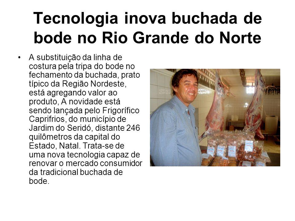 Tecnologia inova buchada de bode no Rio Grande do Norte