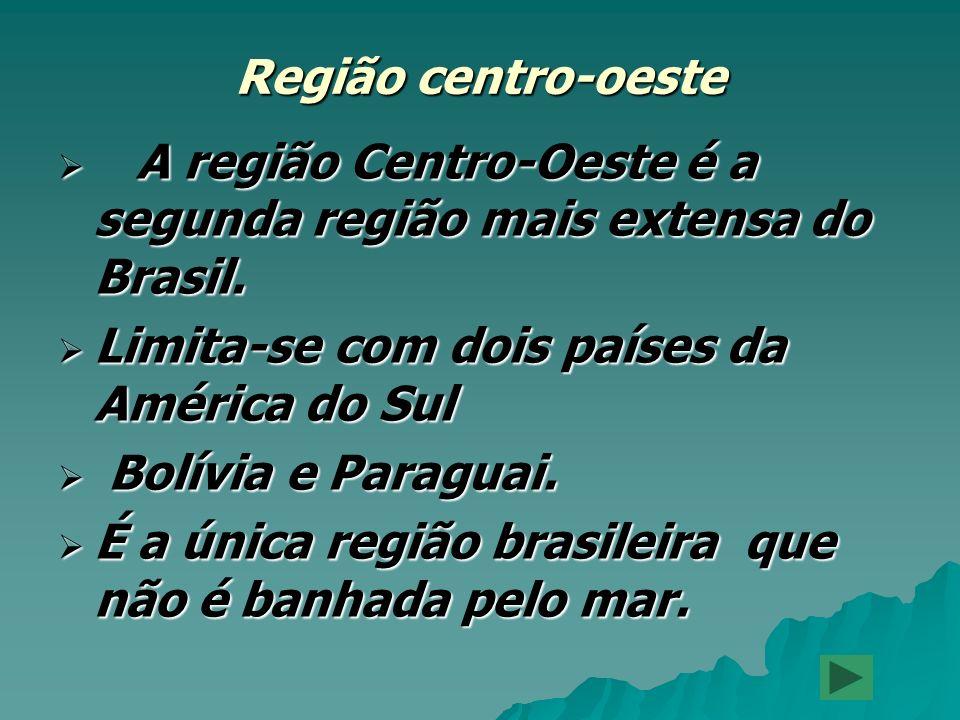 Região centro-oeste A região Centro-Oeste é a segunda região mais extensa do Brasil. Limita-se com dois países da América do Sul.