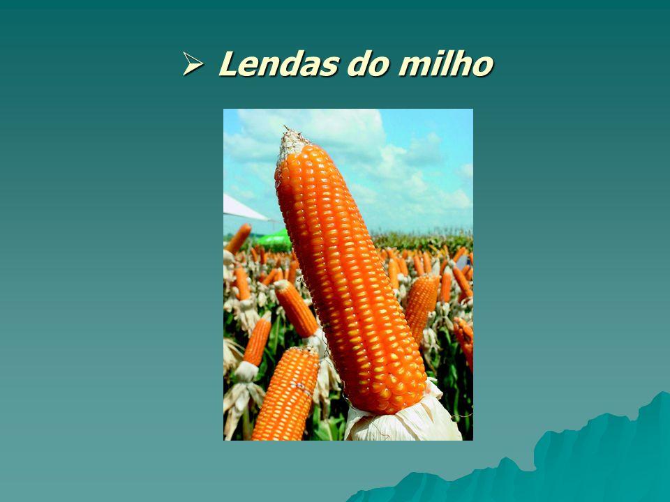 Lendas do milho