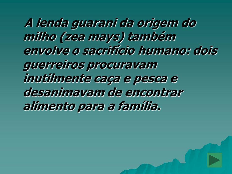 A lenda guarani da origem do milho (zea mays) também envolve o sacrifício humano: dois guerreiros procuravam inutilmente caça e pesca e desanimavam de encontrar alimento para a família.