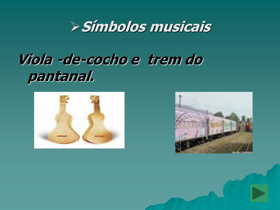 Símbolos musicais Viola -de-cocho e trem do pantanal.
