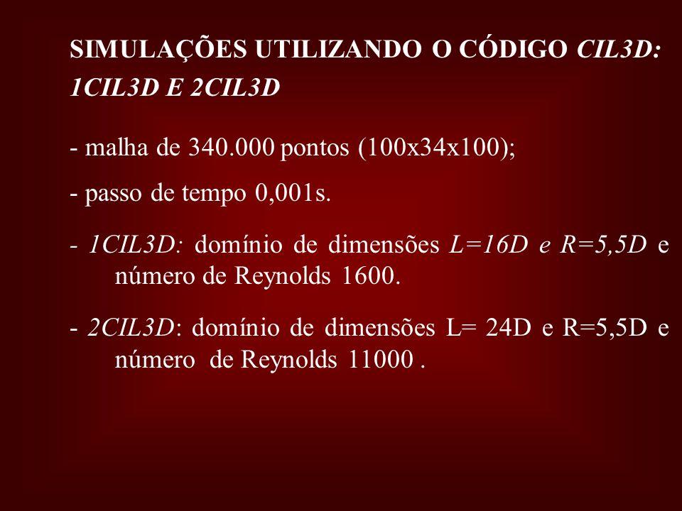 SIMULAÇÕES UTILIZANDO O CÓDIGO CIL3D: