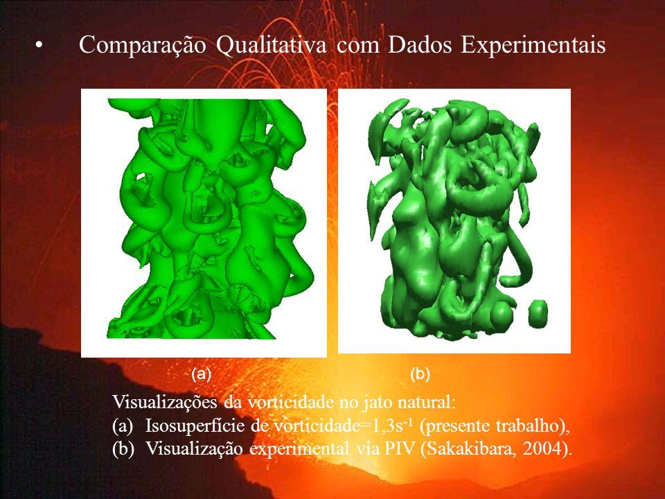 Comparação Qualitativa com Dados Experimentais