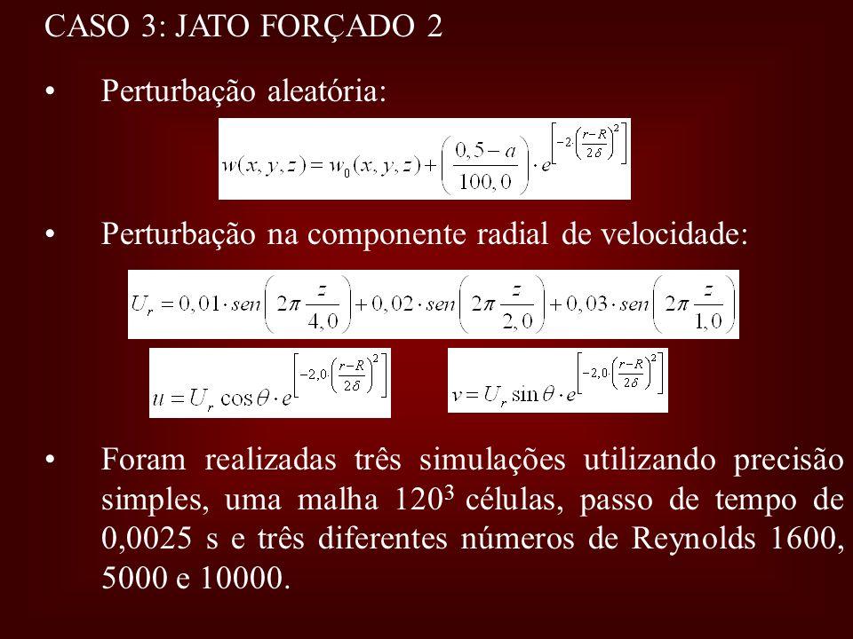CASO 3: JATO FORÇADO 2 Perturbação aleatória: Perturbação na componente radial de velocidade: