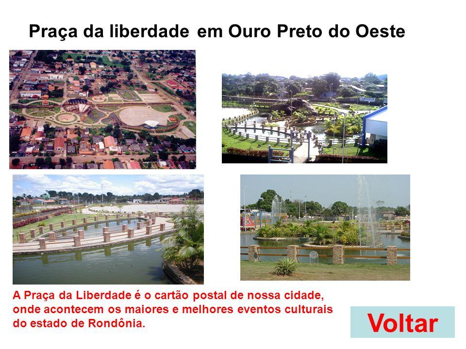 Voltar Praça da liberdade em Ouro Preto do Oeste