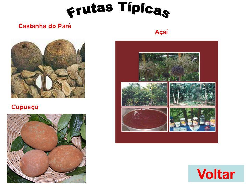 Frutas Típicas Castanha do Pará Açaí Cupuaçu Voltar