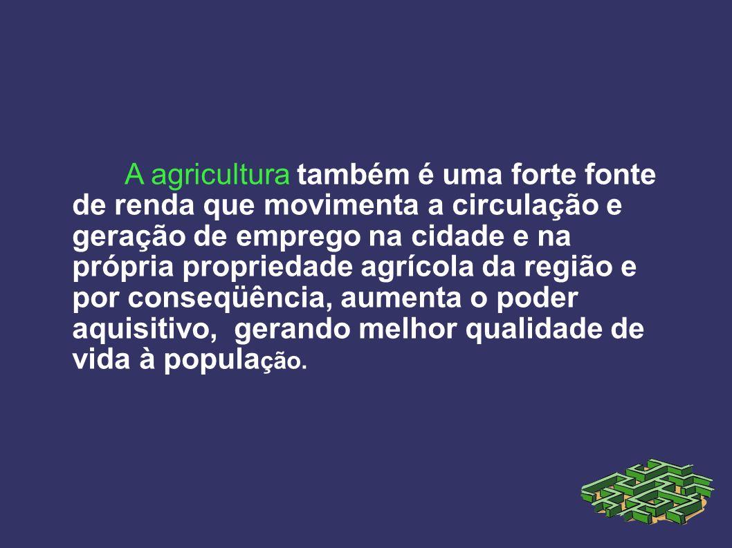 A agricultura também é uma forte fonte de renda que movimenta a circulação e geração de emprego na cidade e na própria propriedade agrícola da região e por conseqüência, aumenta o poder aquisitivo, gerando melhor qualidade de vida à população.