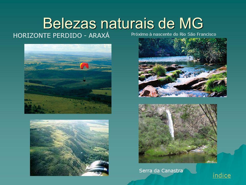 Belezas naturais de MG HORIZONTE PERDIDO - ARAXÁ índice