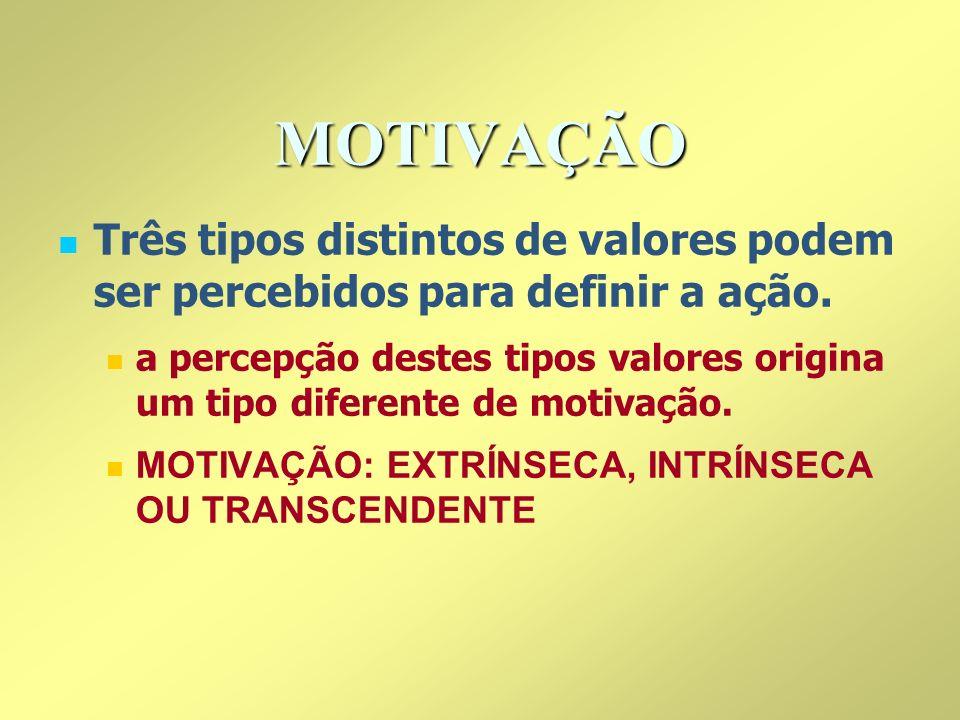 MOTIVAÇÃOTrês tipos distintos de valores podem ser percebidos para definir a ação.