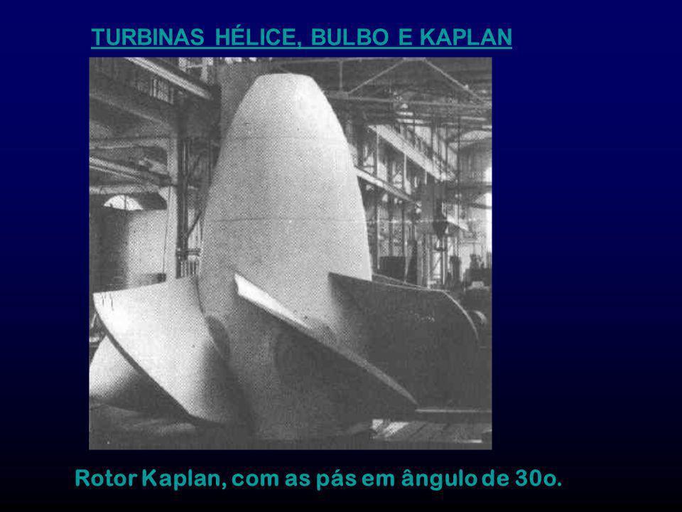 Rotor Kaplan, com as pás em ângulo de 30o.
