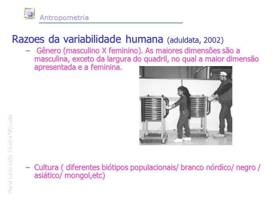 Maria Lucia Leite Ribeiro Okimoto