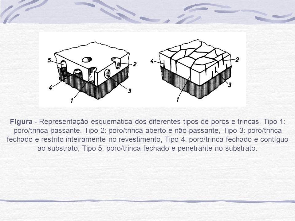 Figura - Representação esquemática dos diferentes tipos de poros e trincas.