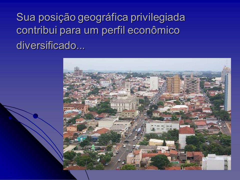 Sua posição geográfica privilegiada contribui para um perfil econômico diversificado...
