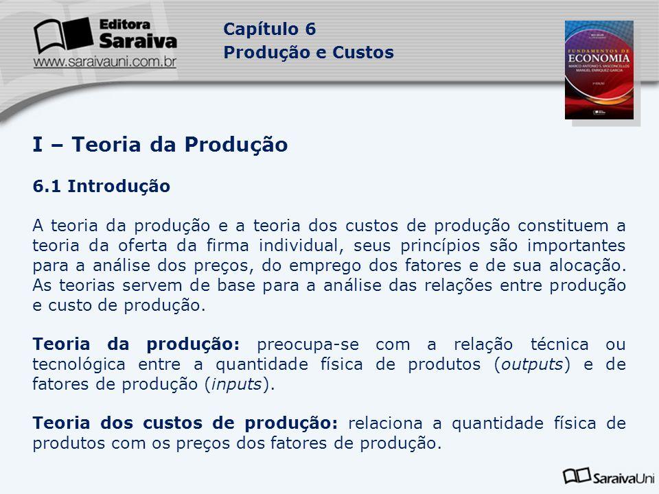 I – Teoria da Produção 6.1 Introdução