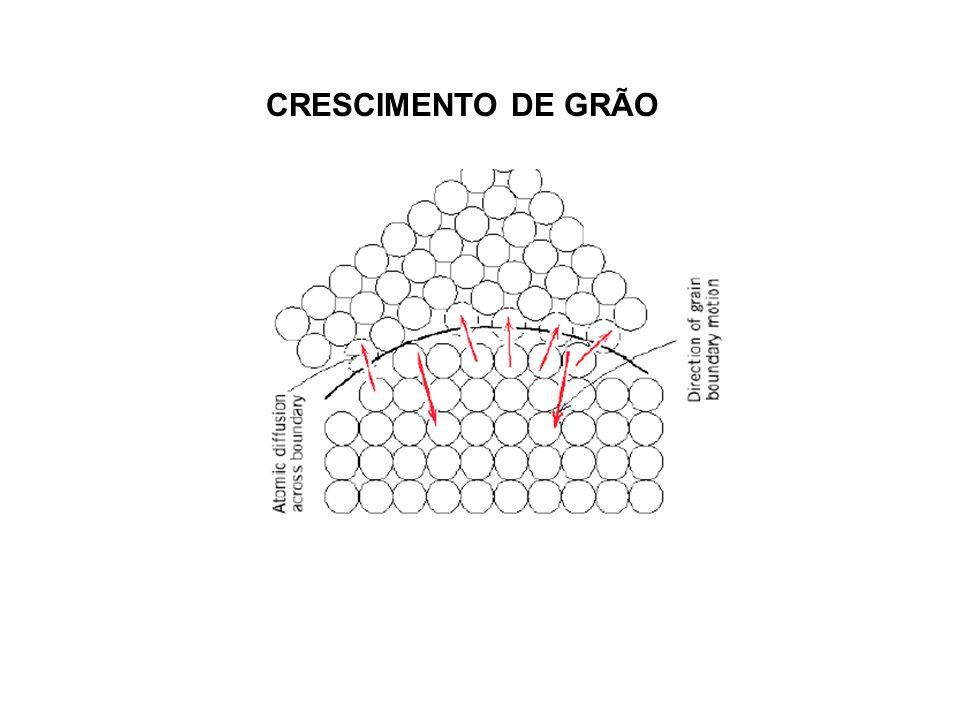 CRESCIMENTO DE GRÃO