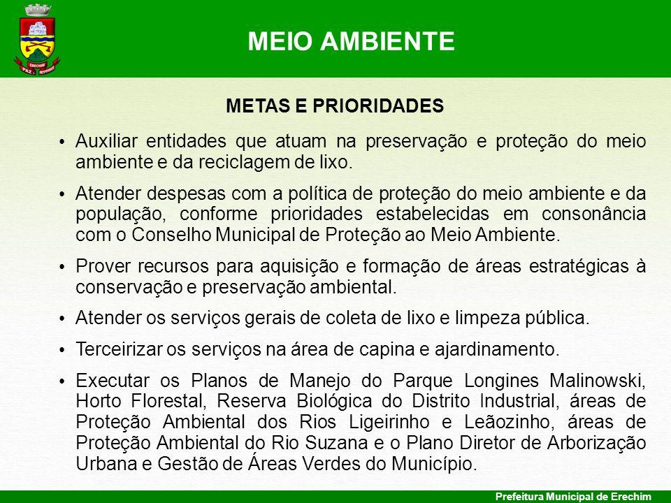 MEIO AMBIENTE METAS E PRIORIDADES