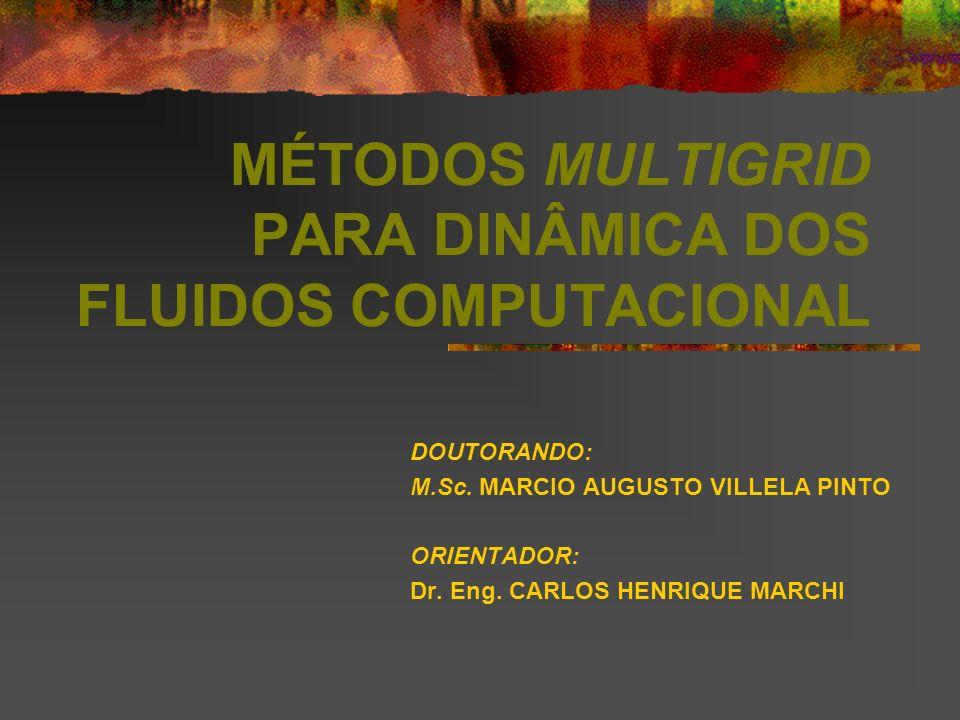 MÉTODOS MULTIGRID PARA DINÂMICA DOS FLUIDOS COMPUTACIONAL